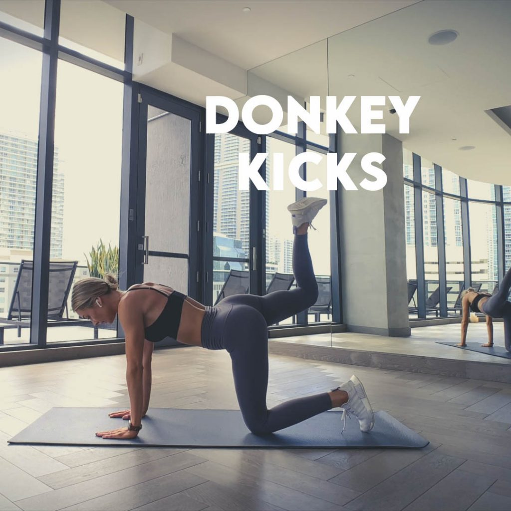 donkey kicks linker been